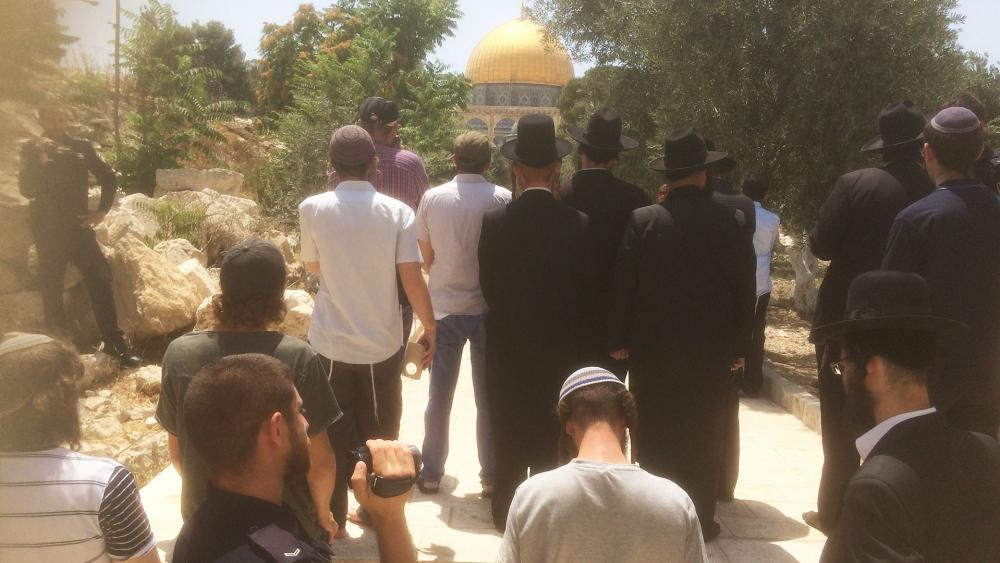 Jews Visit Temple Mount, Photo, TPS, Andrew FriedmanFriedman
