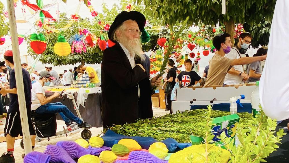 Israelis shop for special items used in rituals of the Jewish Sukkot holiday in Jerusalem. Photo Credit: CBN News
