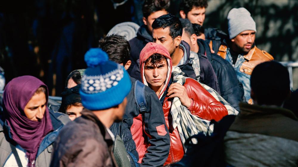 syrianimmigrants