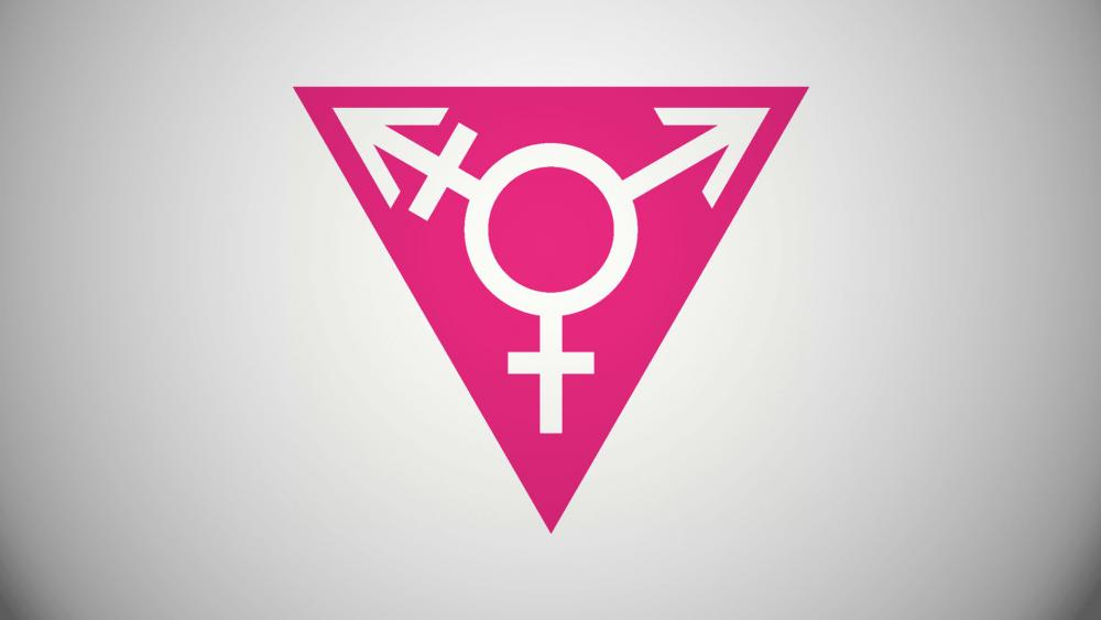 Parents Social Workers Fight Over Childs Gender Identity Cbn News