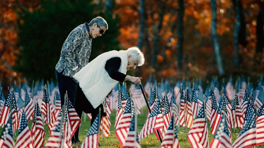 veteransdaymemorialflagsap